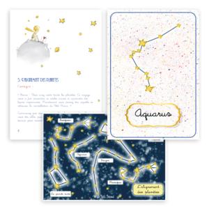 Vignette constellation petit prince 6